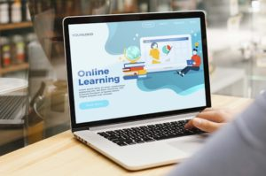 Online Professional Courses